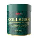 ICONFIT Collagen Superfoods + Inulin (250 g) Neapdorotos kakavos ir uogų